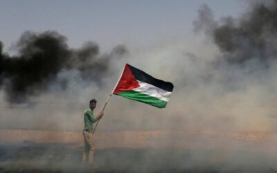 Media Release: ICC ruling on Palestine paves way for investigation of international crimes, Australia's position rejected
